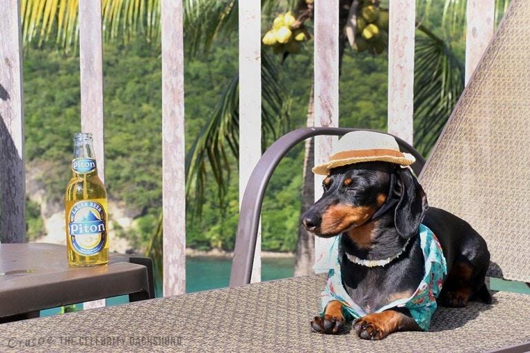 Crusoe Sunbathing